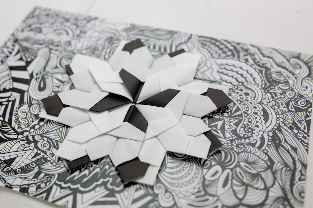 origami collaboration Kirsty Riddell